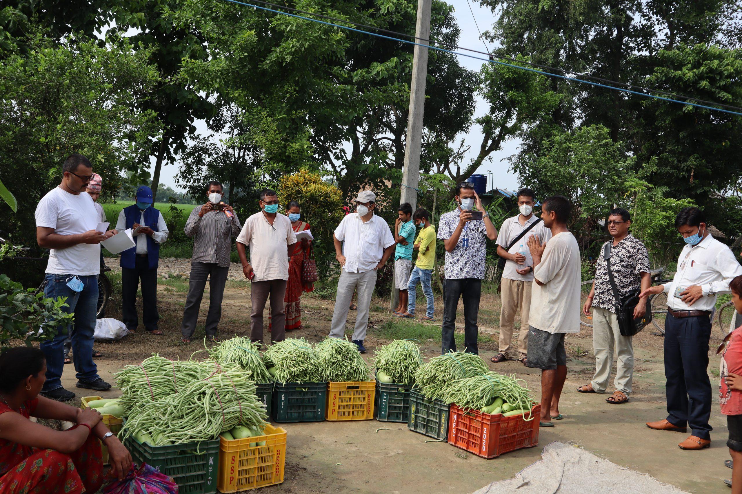 कृषि अनुदान सहयोग छनौट समिति र पत्रकारहरुद्धारा संचालित कृयाकलापको संयुक्त अनुगमन